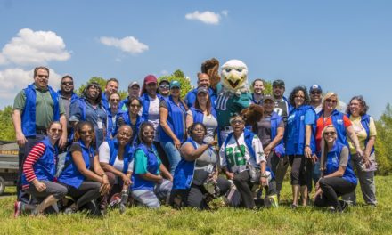 Environment scores with PGW, Eagles